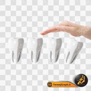 فایل psd دندان